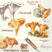 Lunch napkins CHANTERELLE cream