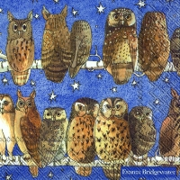 Serviettes lunch OWLS