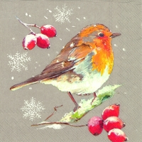Serviettes lunch WINTER ROBIN linen