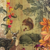 Lunch napkins AUTUMN COLLAGE