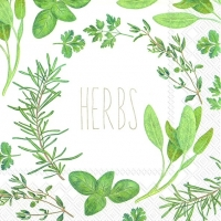 Lunch napkins HERBS