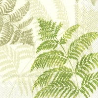 Serviettes lunch FERN green