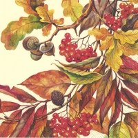 Serviettes lunch FALL COLORS cream