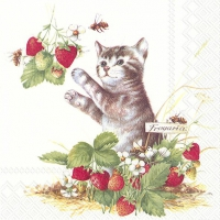 Napkins 33x33 cm - KITTY AND STRAWBERRIES
