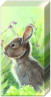 handkerchiefs RABBIT IN THE MEADOW