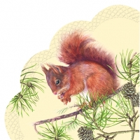Napkins - round HUNGRY SQUIRREL