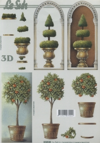 Feuille 3D Format A4 Orangenbäumchen