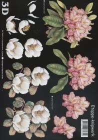 Feuille 3D 2x Blumen Format A4