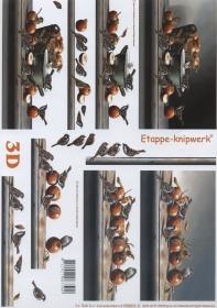 3D sheet Vögel und Äpfel - Format A4