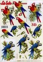 Feuille 3D Format A4 - Papagei