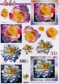3D sheet Rosen Format A4