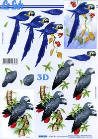 Feuille 3D Format A4 Papagei
