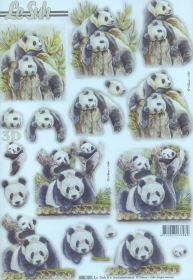 On 3D en feuilles Pandas
