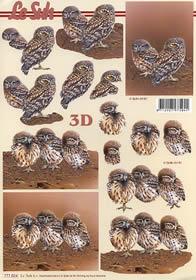 3D sheet Eulen - Format A4