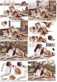 3D sheet Katze und Hund - Format A4