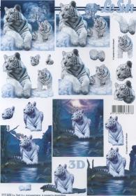 3D sheet 2x weißer Tiger - Format A4
