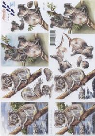 3D-boog - Koalab�r A4-formaat