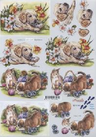 3D sheet Hunde+Katzen - Format A4