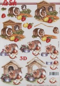 3D sheet Meerschweinchen - Format A4