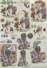 3D sheet Hunde im Garten - Format A4