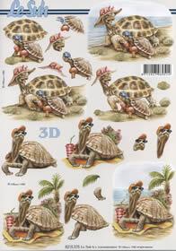 3D Bogen Schildkröten - Format A4