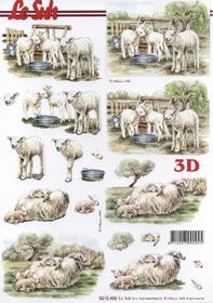 3D sheet Schafe - Format A4