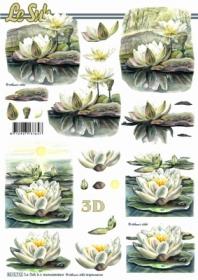 3D sheet Seerosen - Format A4