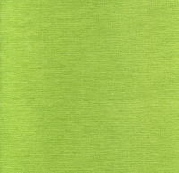 Dinner napkins CROMATICO Kiwi green