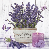 Lunch Servietten Lavender in a Wooden Pot