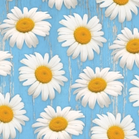 Servilletas Lunch Daisies on blue Background