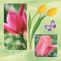 Lunch napkins pink and yellow tulips