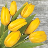 Lunch Servietten yellow Tulips on wood