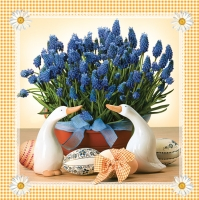 Lunch napkins  MUSCARI orange