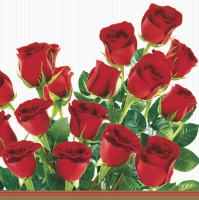 Lunch Servietten Bunch of red roses