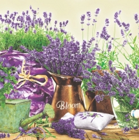 Lunch Servietten Lavendel