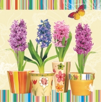 Serviettes lunch three cup with hyacinths
