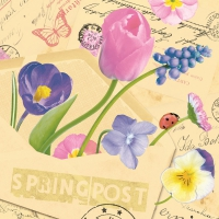 50 Serviettes de table Linclass - SPRINGPOST