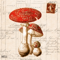 Lunch napkins Amanita Muscaria