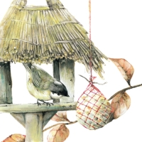 Lunch napkins Birdhouse