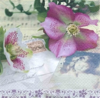 Serviettes lunch Christmas Rose