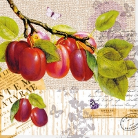Serviettes lunch Botany Plum