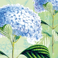 Serviettes de table 33x33 cm - hortensia