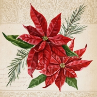 Serviettes cocktail  Vintage Poinsettia