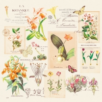 Napkins 33x33 cm - Botanique
