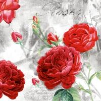 Napkins 33x33 cm - Rose Garden