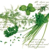 Serviettes de table 33x33 cm - Herbes vertes