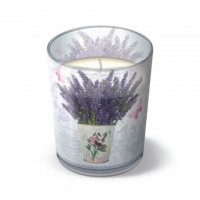 Candles in a glas Flowering Lavender 