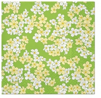 Serviettes cocktail  Floral Carpet green K