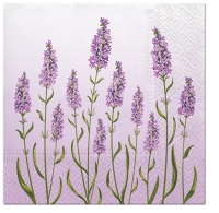 Lunch napkins Lavender Field
