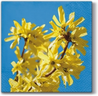 Lunch napkins Forsythia